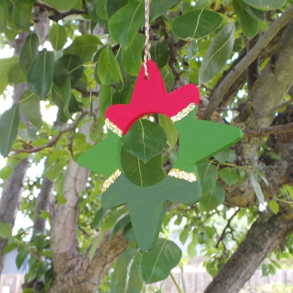 Australian Christmas Star Decoration - Bush/Forest